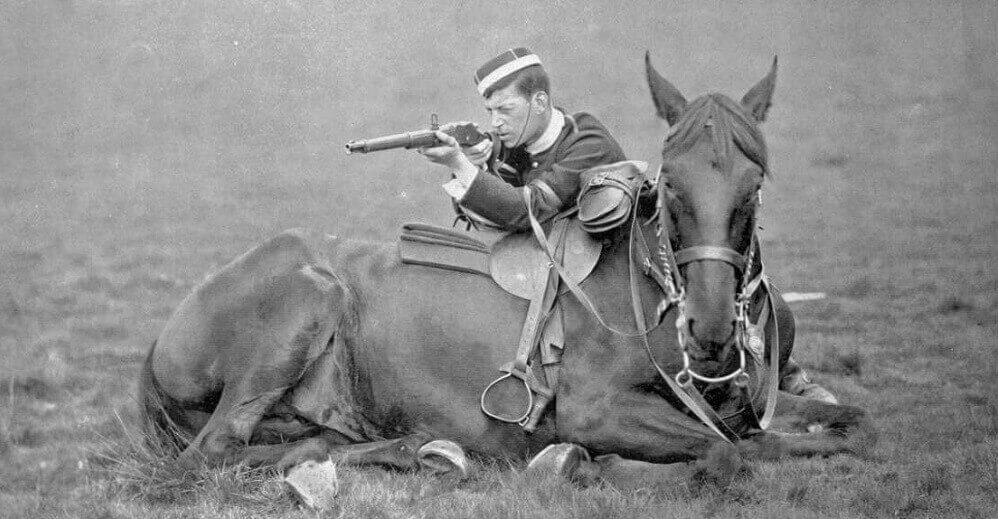 лошади в войну
