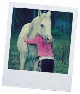 болезни лошадей