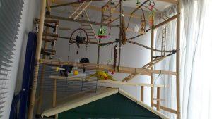Игровая площадка для попугая
