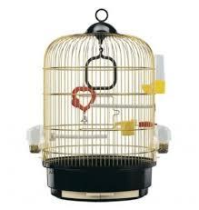 какая клетка нужна для волнистого попугая