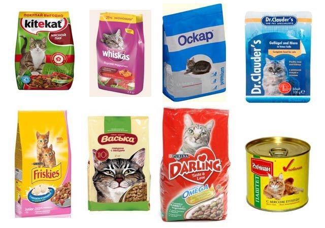 Классы кормов для кошек рейтинг