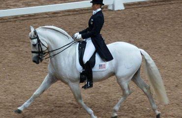 езда на лошадях