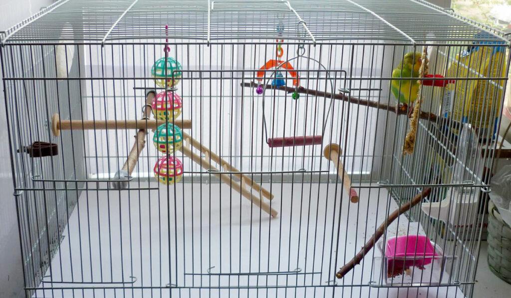 Клетка для волнистого попугая фото