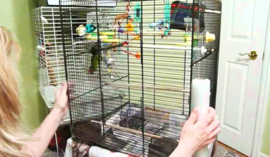 Уборка клетки попугая фото