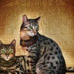 Египетский мау - древняя порода