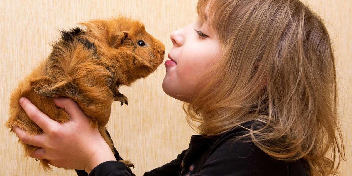 Девочка с морской свинкой
