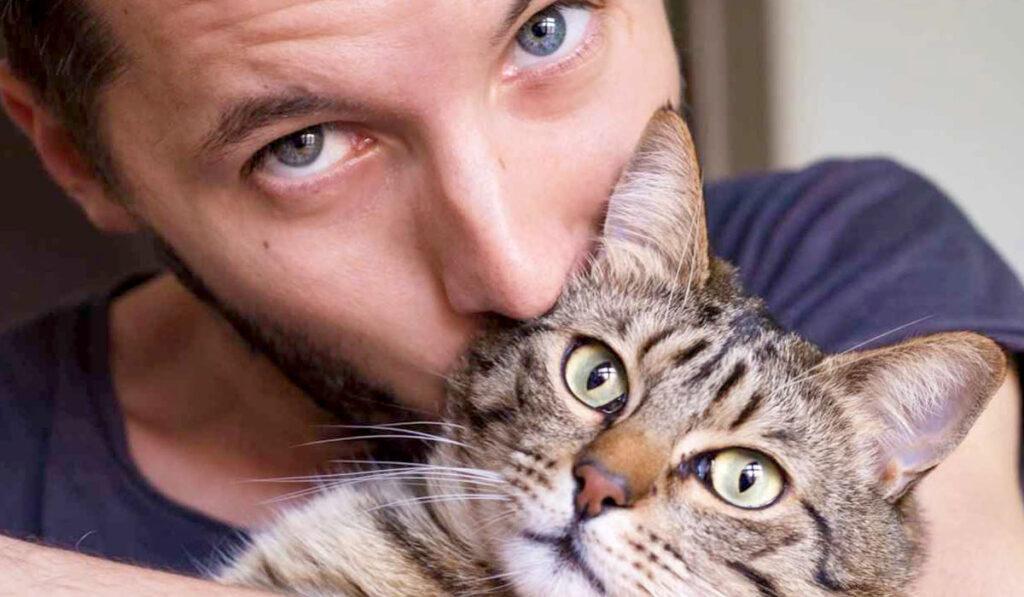 Самые красивые породы кошек фото
